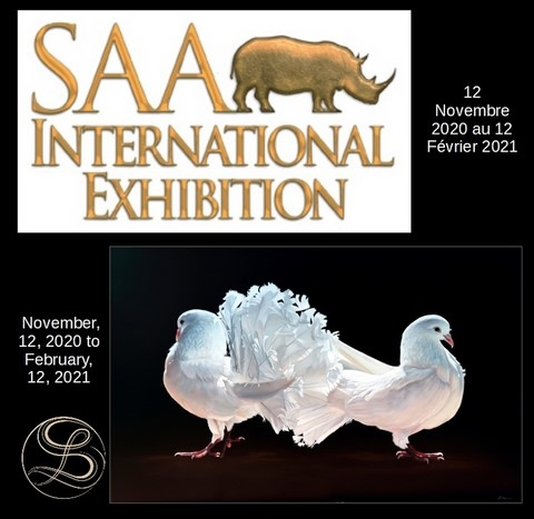 SAA International Exhibition 2020 - Laurence Saunois, artiste